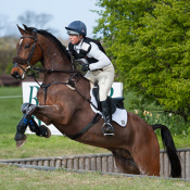 Tilston Tic Toc at Burnham Market (1) 2014 © Trevor Holt