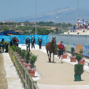 Athens Olympics 2004: Photo HM